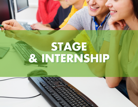 stage internship eVISO