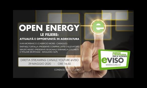 Embedded thumbnail for OPEN ENERGY - Le filiere: attualità e opportunità in agricoltura